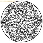 free-mandalas-coloring-13