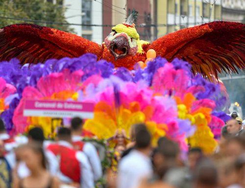 Virágba borul Debrecen – karnevál gyógyító virágokkal